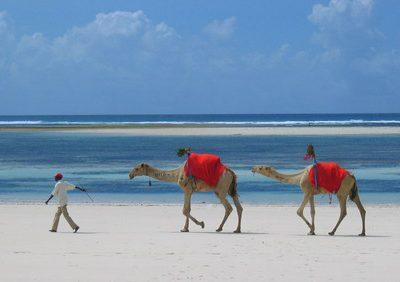 A sabbatical in Africa..